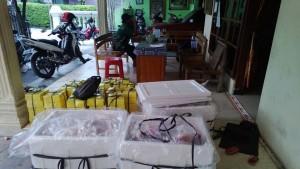Distributor Daging Kambing Aceh