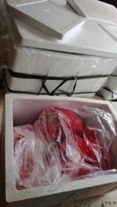 Jual daging kambing di Bengkulu harga terjangkau