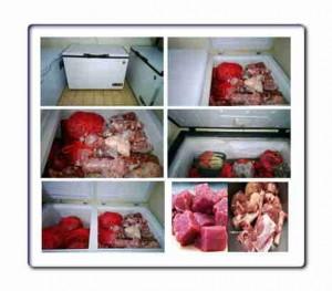 Jual daging kambing di Palangkaraya harga terjangkau