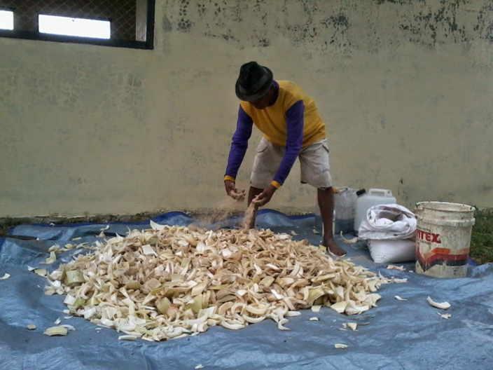 Pakan fermentasi untuk ternak kambing