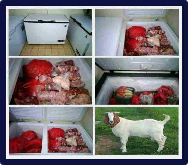 Daging kambing halal di Bremen